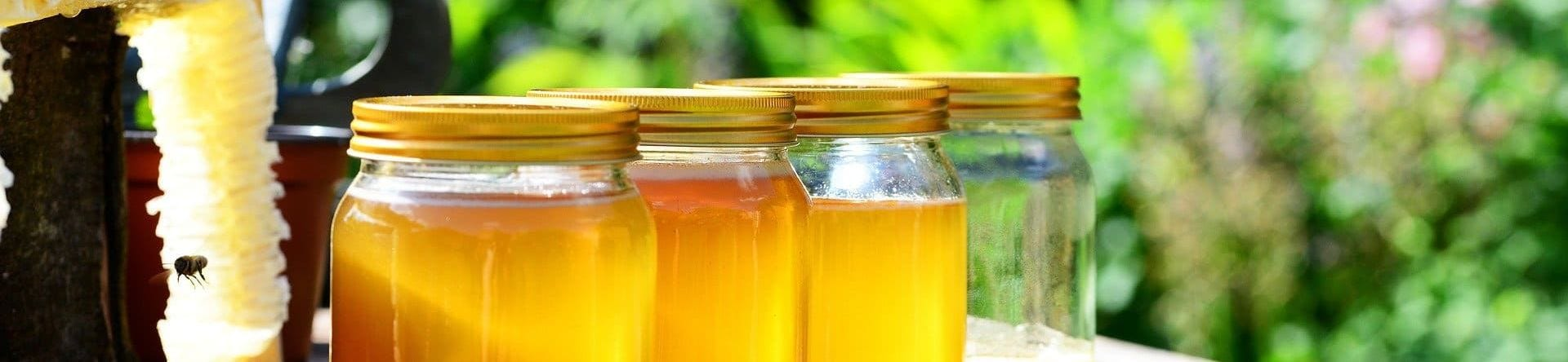 -10% apiculture récolte et hivernage