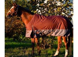 Couverture d'hiver pour chevaux 135cm