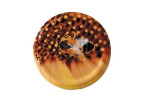 Capsule TO82 abeille sur pollen (x 740)