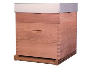 Red Cedar : ruche Dadant 10 c. toit plat