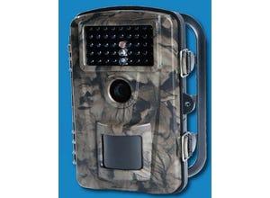 Caméra de surveillance et d'observation spéciale faune/flore