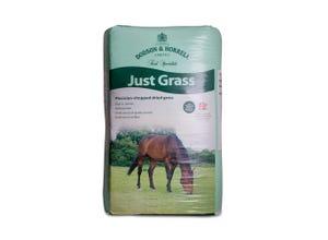 Just Grass 15 kg