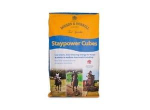 Staypower Cubes 20 kg