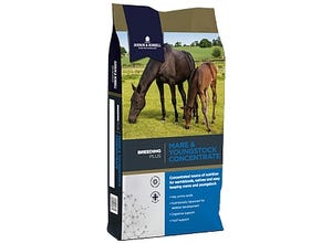 Mare and Youngstock Concentrate 20 kg