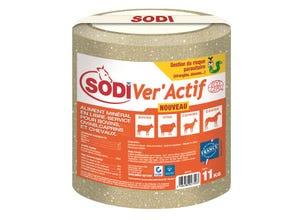 SodiVer'Actif UAB 11 kg