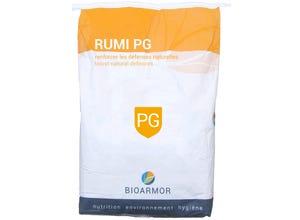 Sac poudre Rumi PGS 25 kg