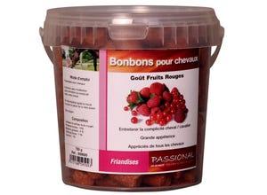 Bonbons fruits rouges pour chevaux 750g