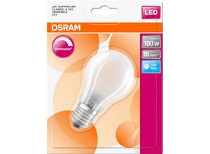 Ampoule LED Standard verre dépoli variable 12W=100 E27 froid