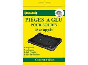 Piège à souris Myriad Glue (x4)