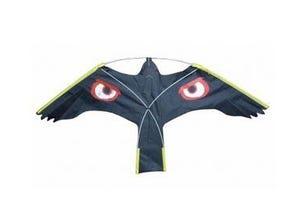 Cerf-volant oeil brillant