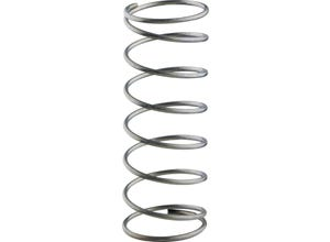 Ressort de mécanisme acier (x10)