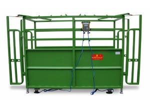 Pèse bétail PM61 peinte