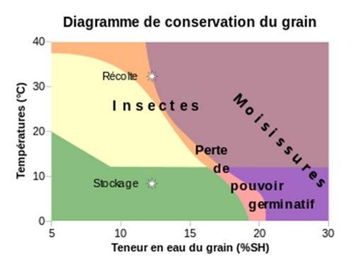 conservation du grain