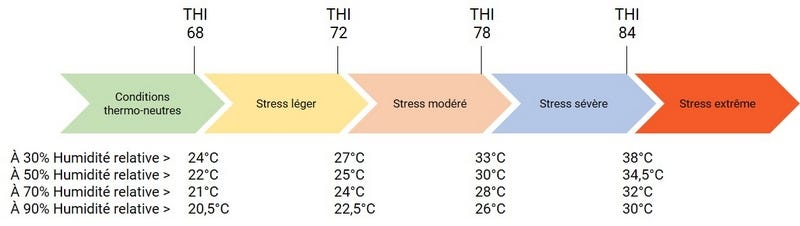 THI stress thermique